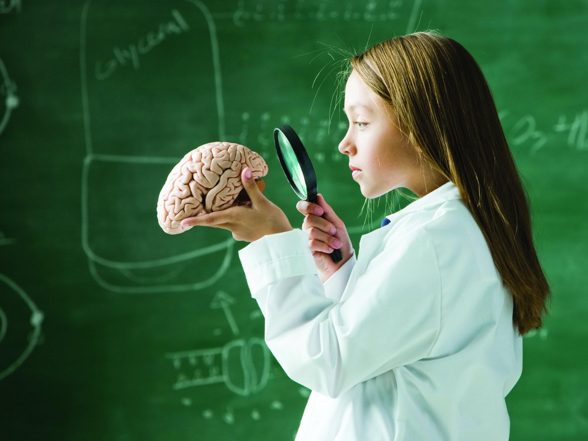 Изучает мозг